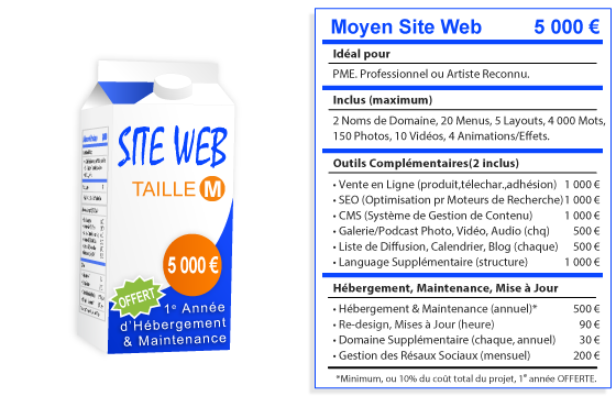 siliconfarm-website-package-m-fr